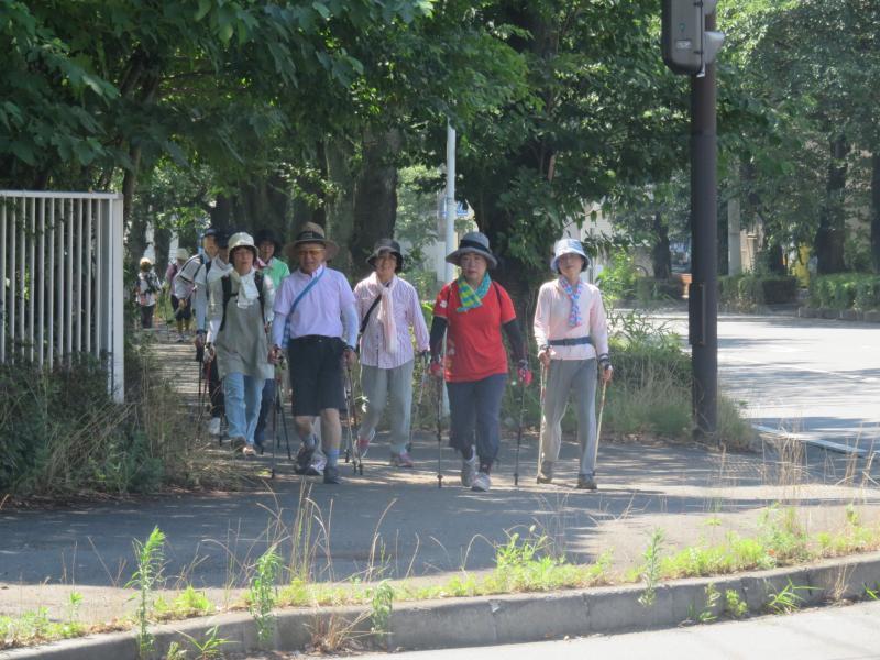 工業団地の歩道