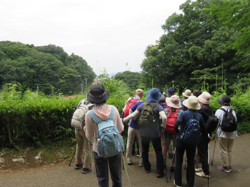 大山、丹沢方面を眺望する
