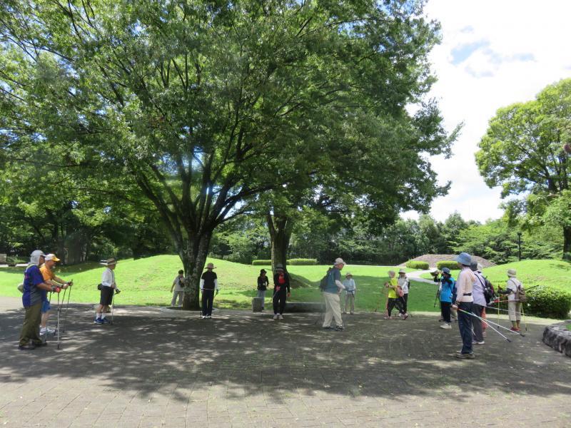 古墳公園の木陰でレッスン