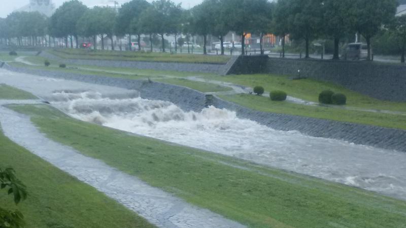 水無川の流れ