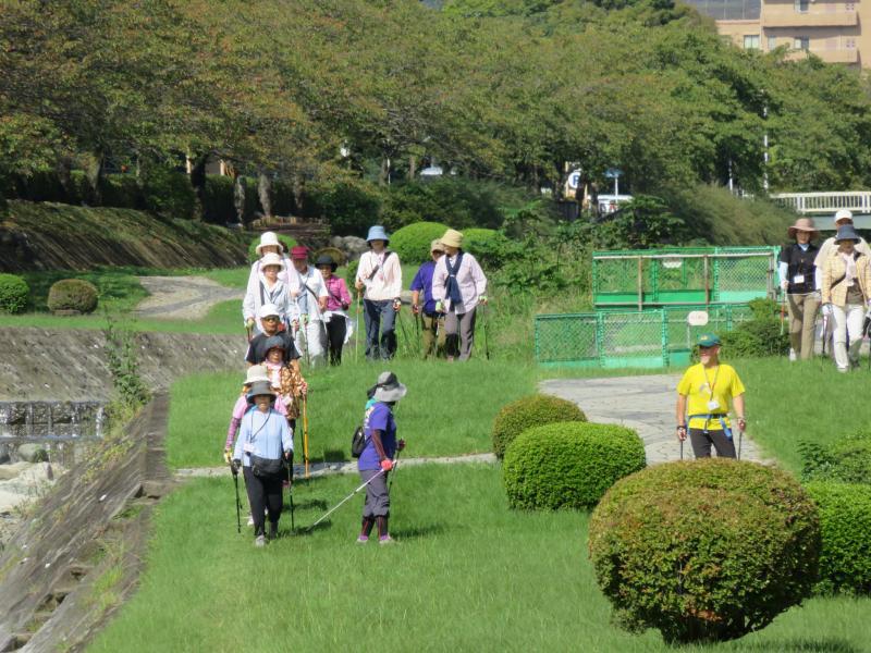 水無川遊歩道・・草が少し伸びている