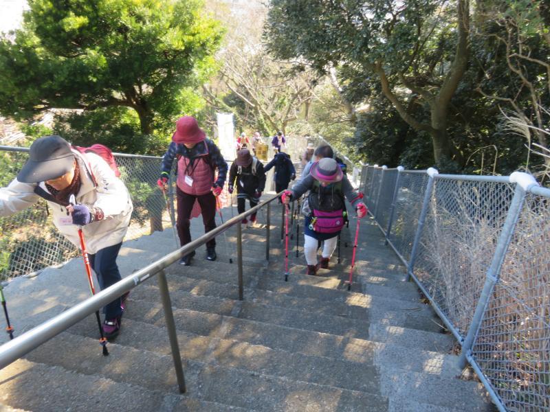 300段の急な階段