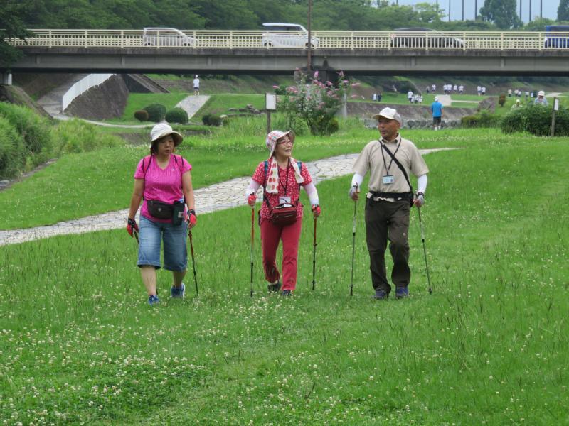 緑道は良く整備されて歩きやすい