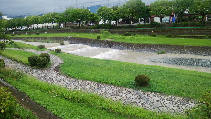 水無川も流れが速い
