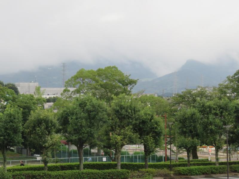丹沢の山々も