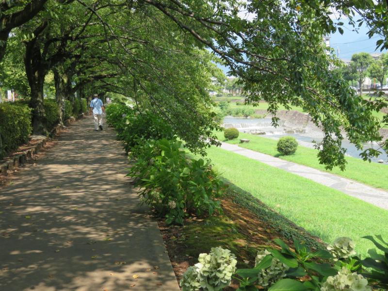 桜土手は木陰です、川からの風あり
