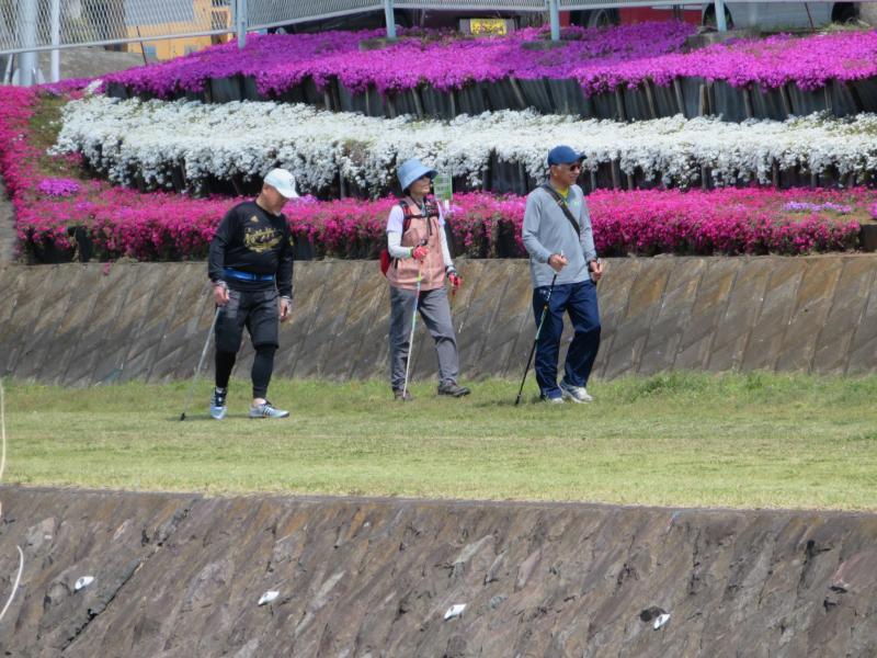 芝桜の前を(水無川左岸)