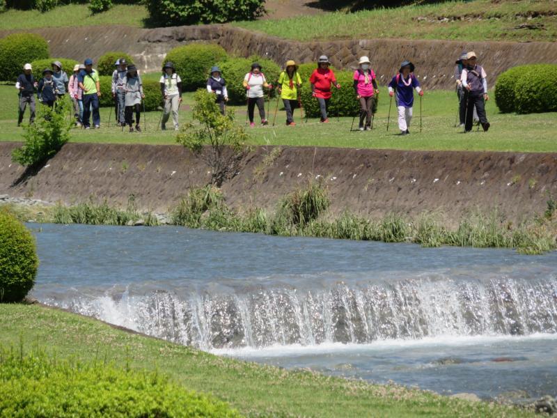 水無川の水量は多い