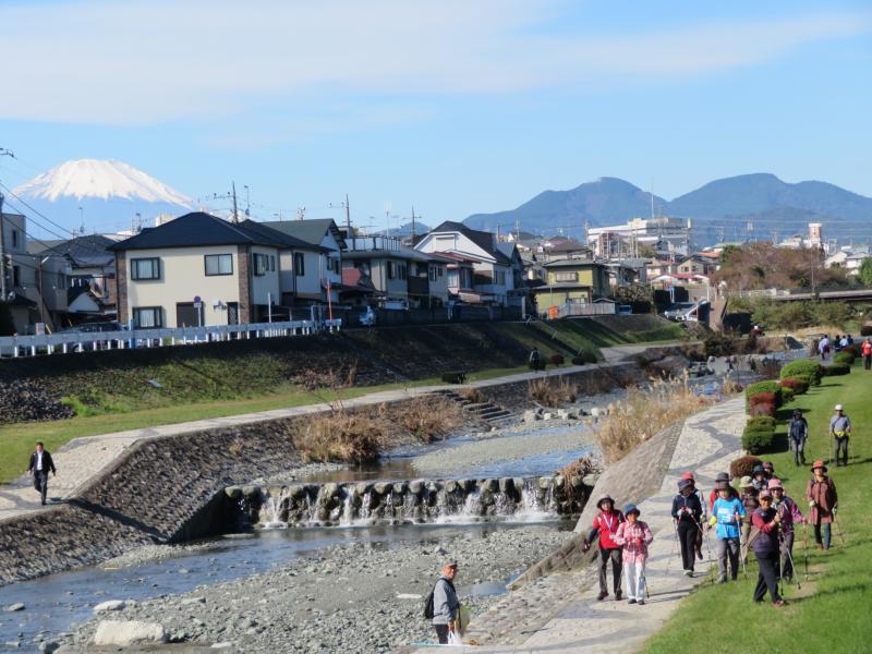 ここから富士山が見れる