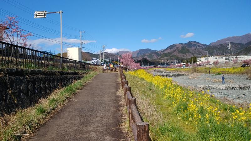戸川公園に続く遊歩道