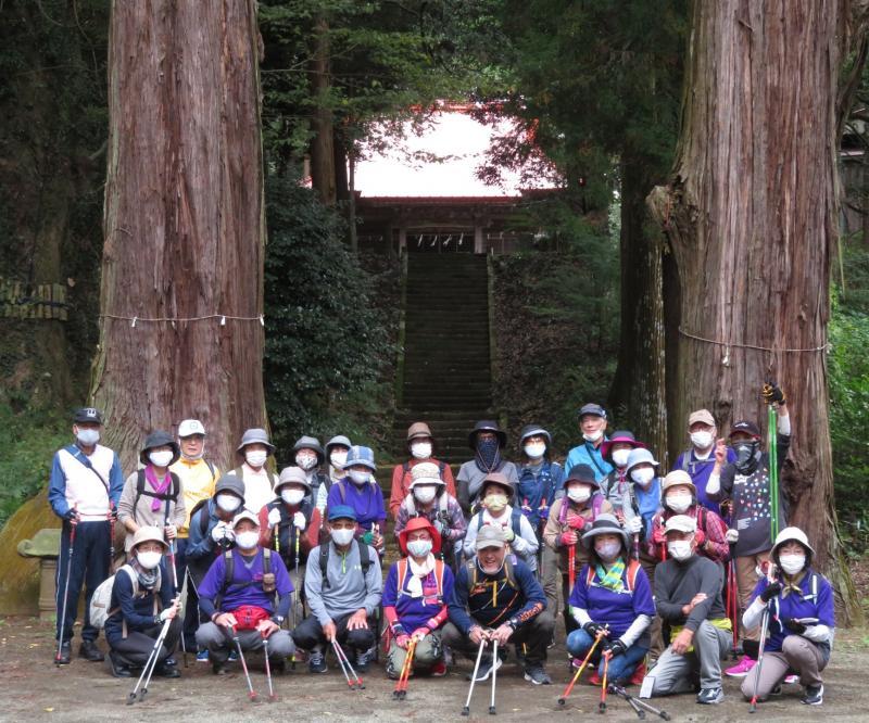 白山神社樹齢600年の杉