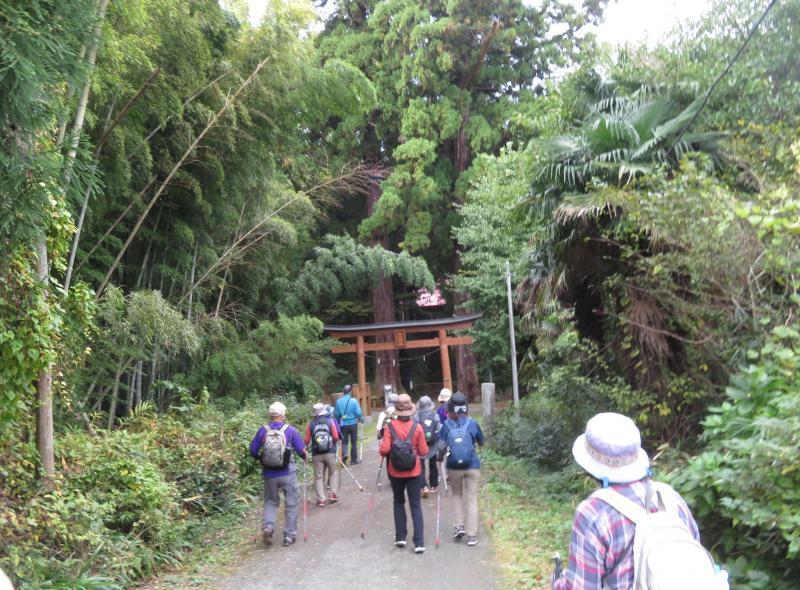 ここが白山神社