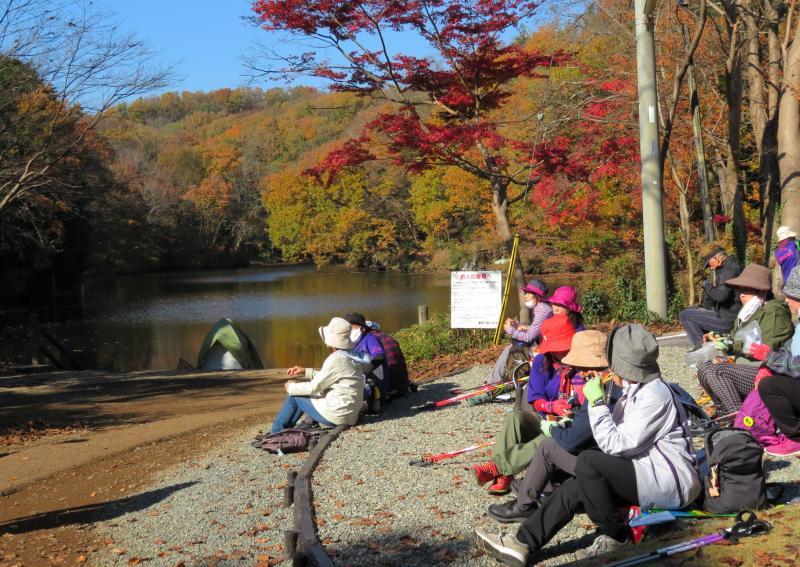 紅葉と湖を見て最高です