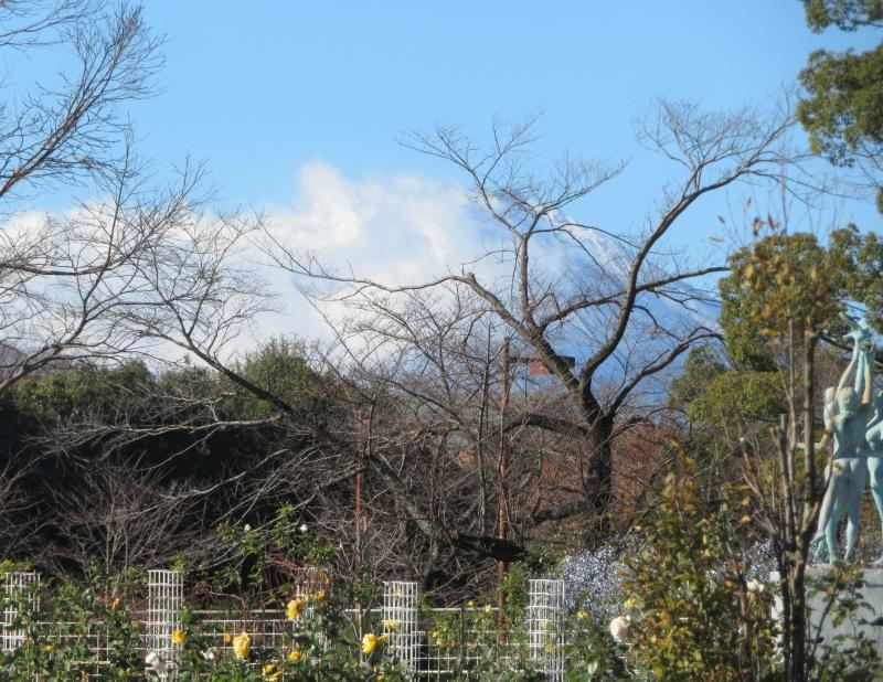 富士山が見えてます