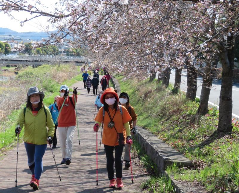 戸川公園方面に向かいます