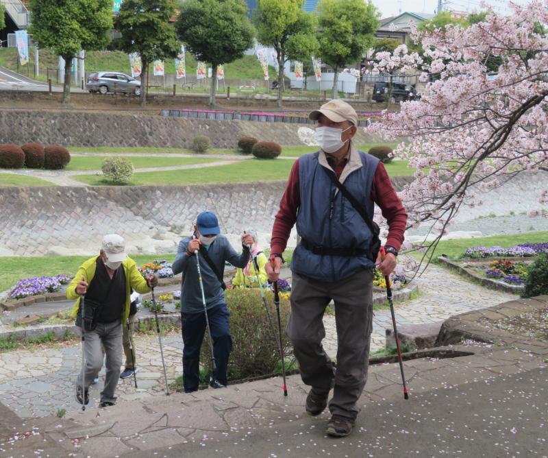 桜見物も終わり