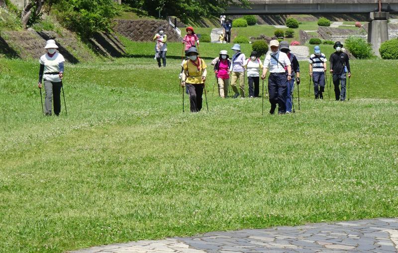 緑道は広くて歩きやすい