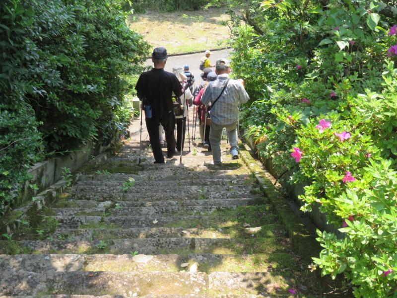白泉寺の急階段