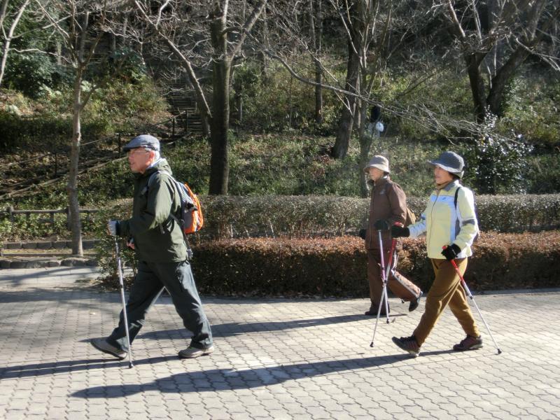 公園内を歩く