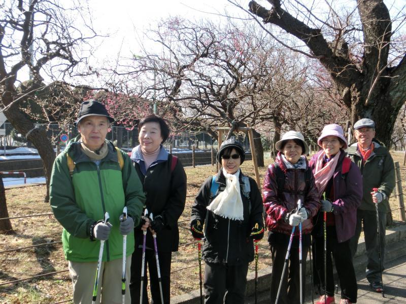 大蔵公園の梅園