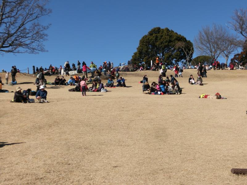 芝生広場は家族連れでいっぱい