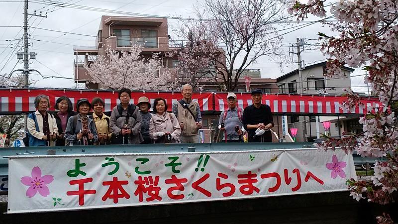 桜まつりの横断幕