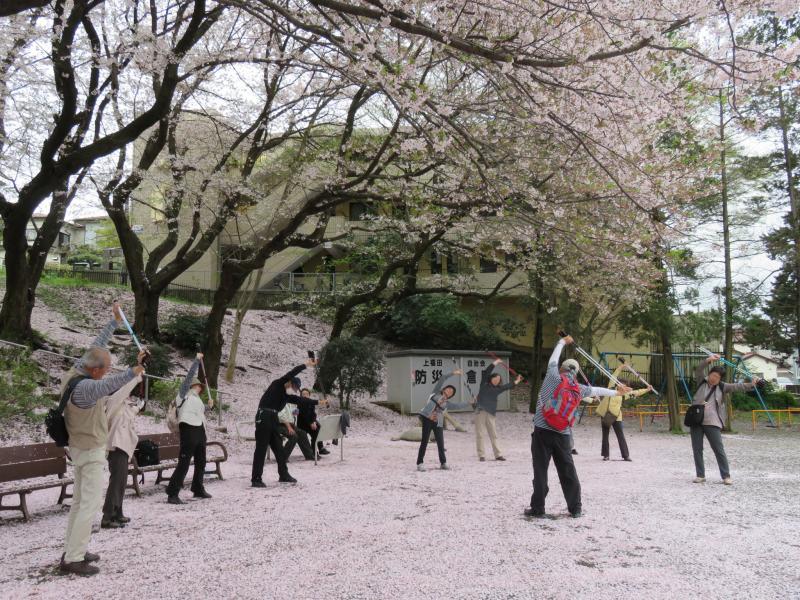 桜一面の富士見公園