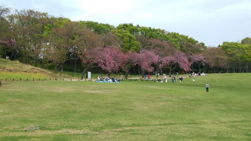 桜山は少し遅かったですね