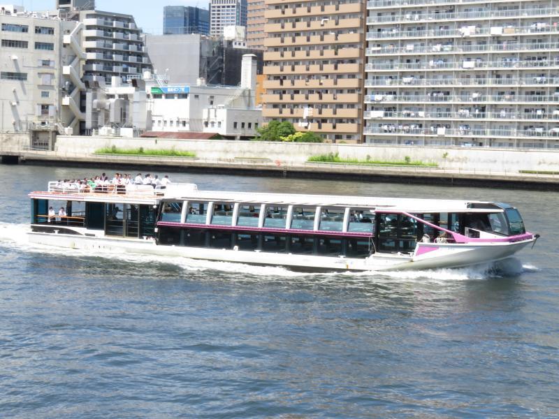 隅田川を頻繁に遊覧船