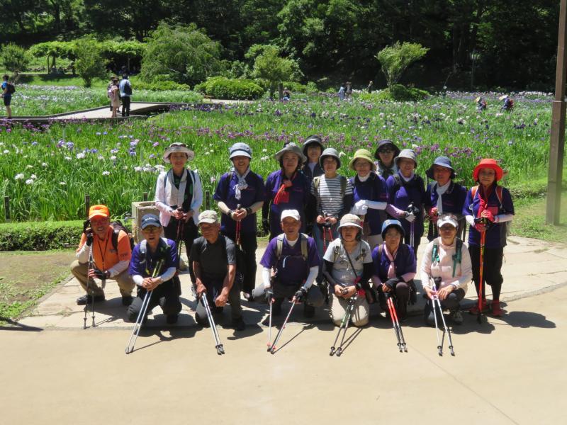 横須賀菖蒲園