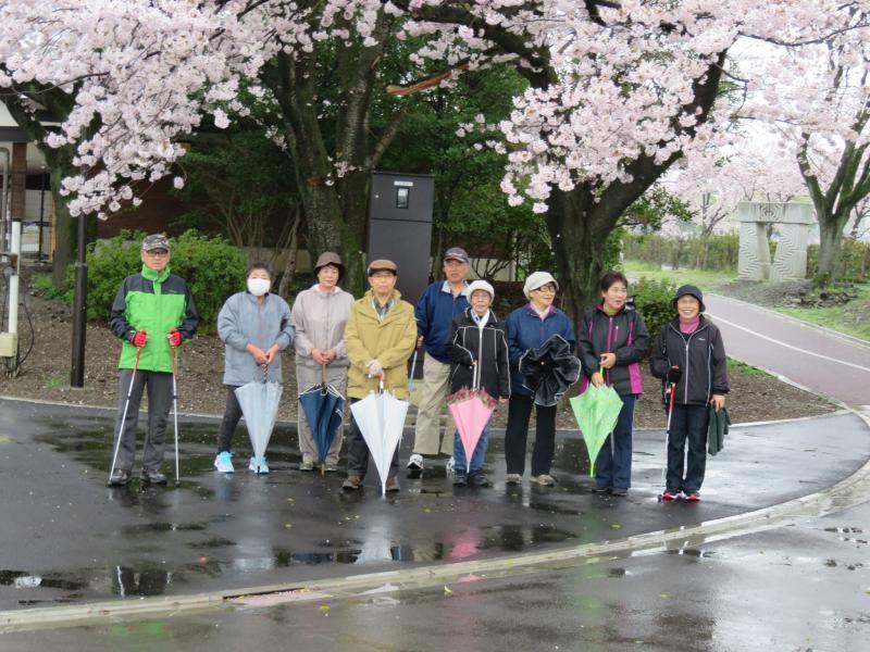 雨の中グランド前の桜の前で