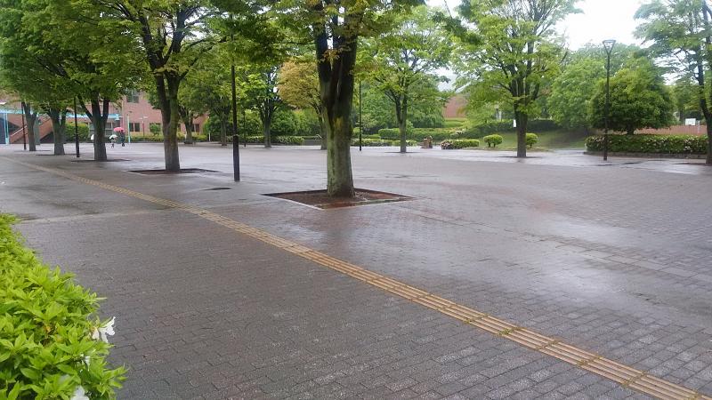 体育館前の路面も水たまり