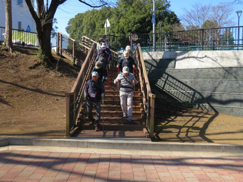 ピクニック広場への階段