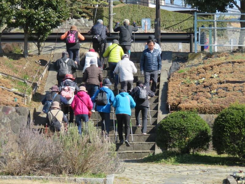 水無川の階段を上がるうさぎグル―ぷ