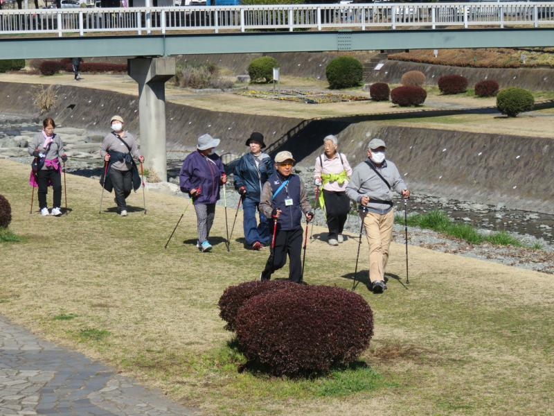 水無川をいくカメさんグループ