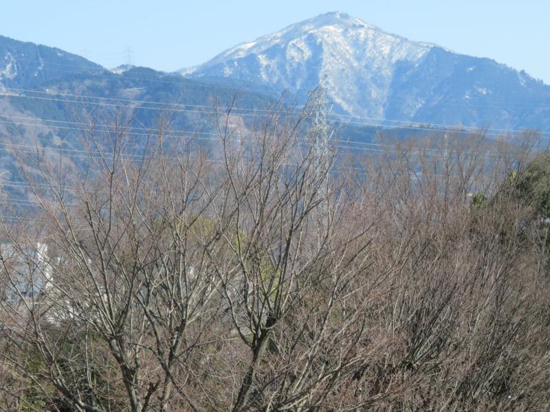 大山もうっすらと雪化粧