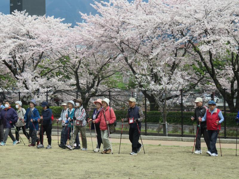 ピクニック広場で基本歩行