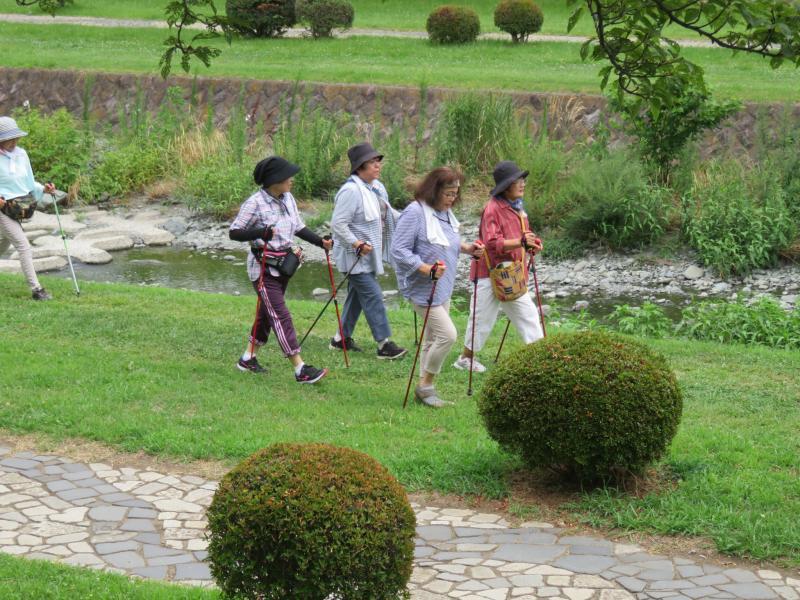遊歩道を行くウサギグループ