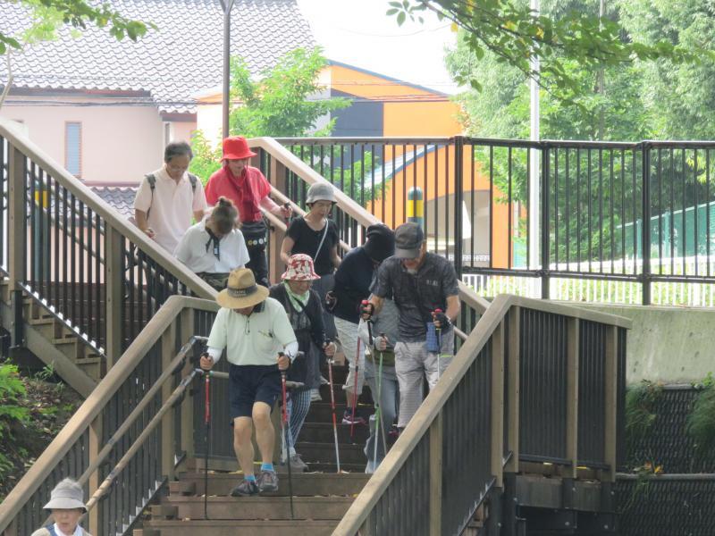 階段を下りるウサギグループ