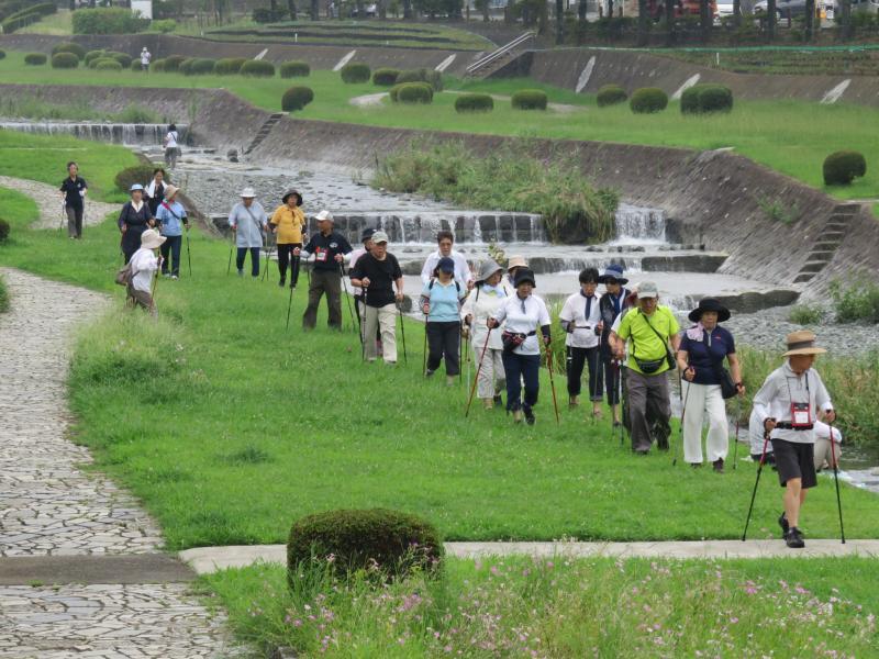 水無川緑道を行く