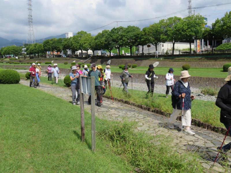 水無川緑道を行くうさぎさんグループ