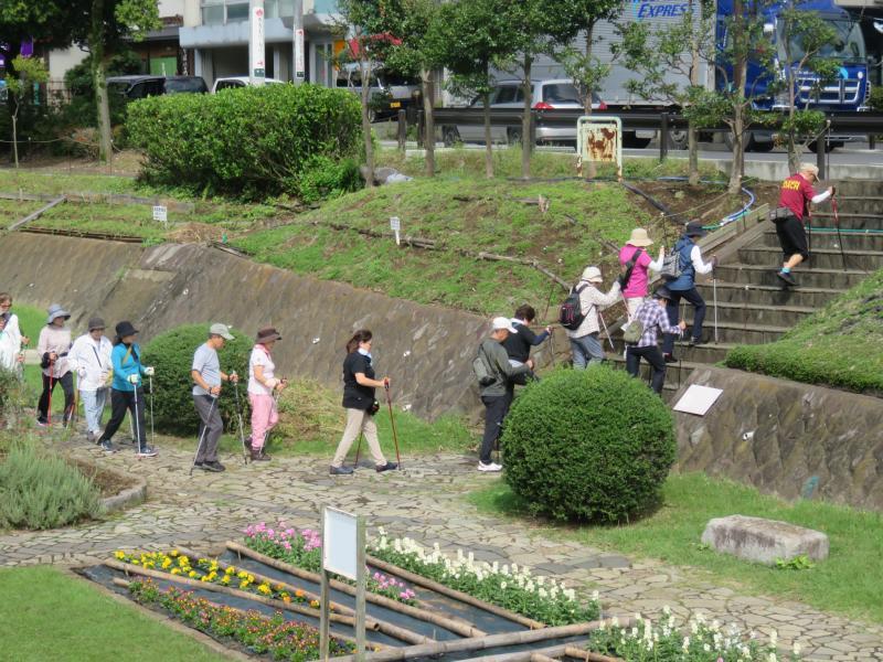 ウさぎグループは緑道から階段を上る