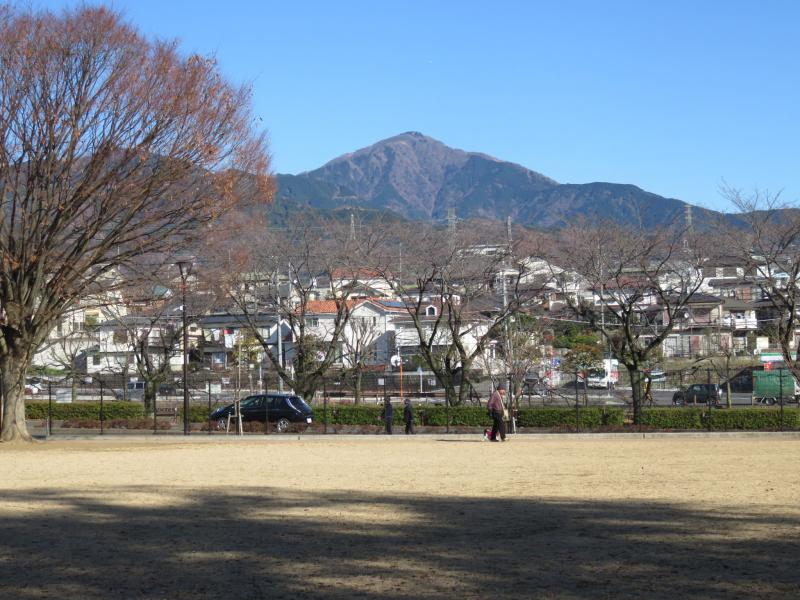 大山です(ピクニック広場から)