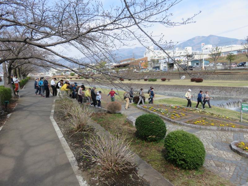 水無川緑道を歩きます