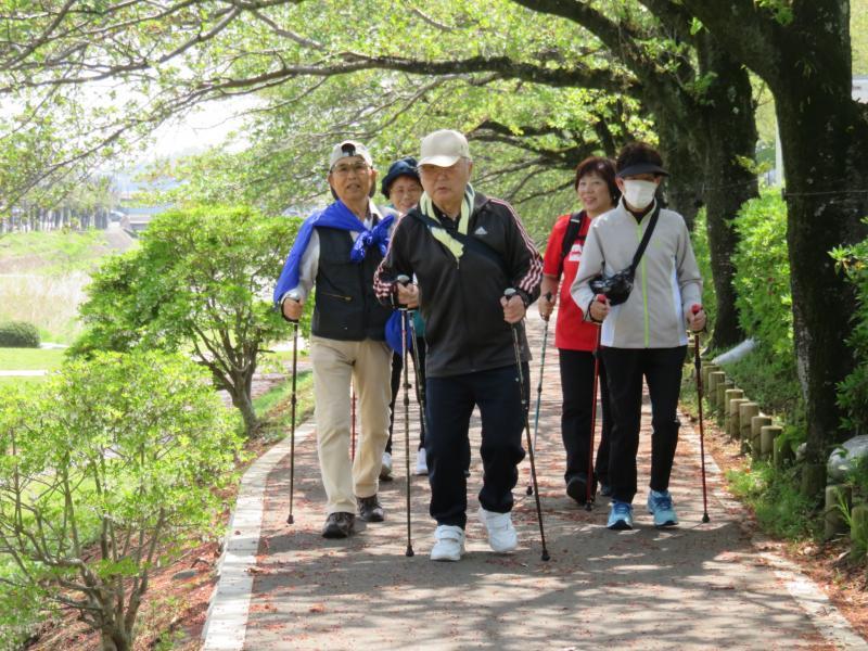 桜の土手(こがめグループ)