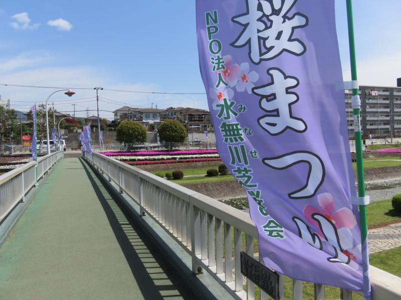 芝桜祭りの幟