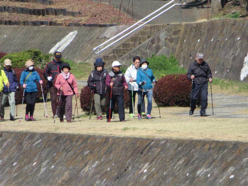 うさぎさんグループは水無川遊歩道
