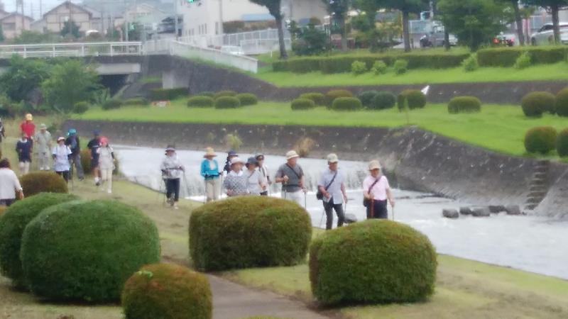 流れの多い水無川の緑道を行く