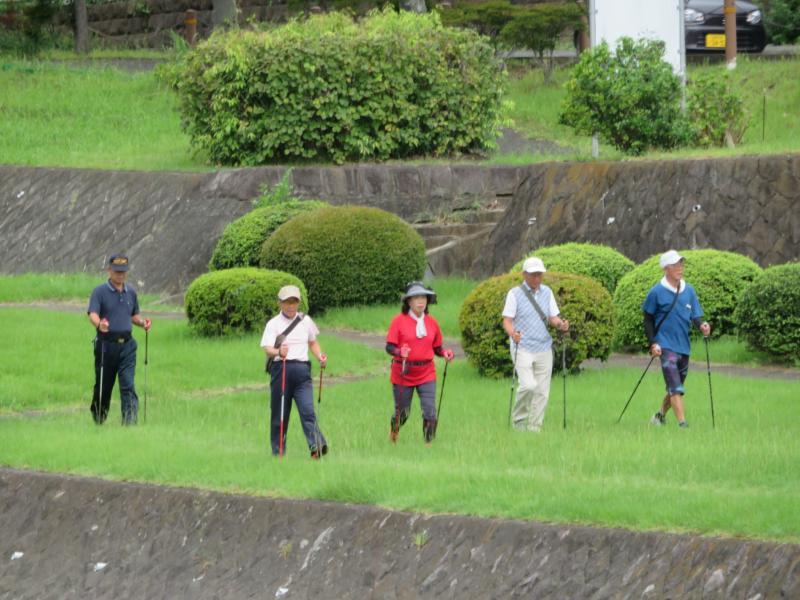 うさぎさんグループは水無川緑道①