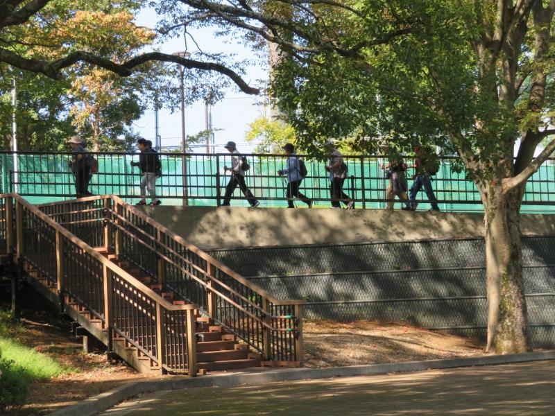 ピクニック広場のスロープ